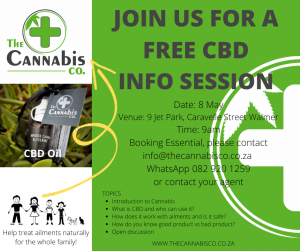 CBD Info Session